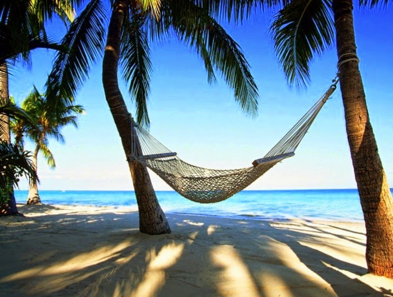 africa-hammock-luxury-palm-trees-Favim.com-516831